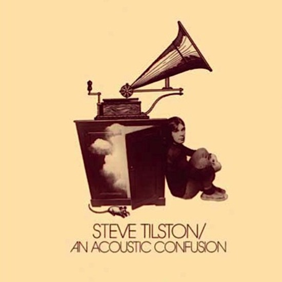 AN ACOUSTIC CONFUSION (LP)