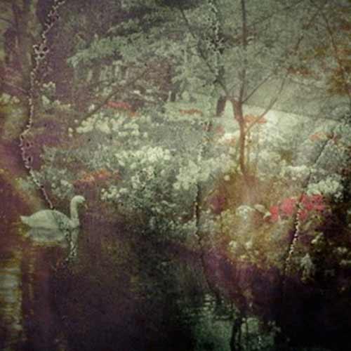 ECHOS PASTORAUX (LP)