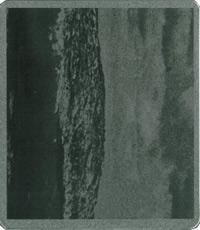 Telmegiddo (The Last Tape Decomposition - February 1982)