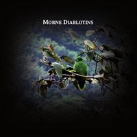 rodolphe alexis - Mornes diablotins