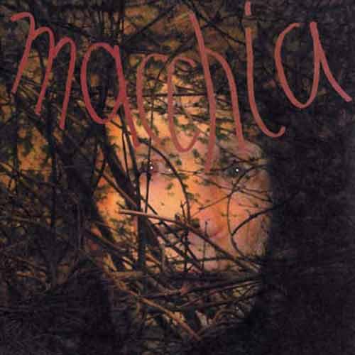MACCHIA FOREST