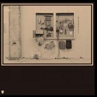 FITS & STARTS (LP)