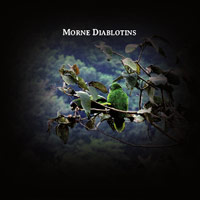 rodolphe alexis - Morne diablotins