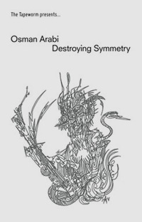 DESTROYING SYMMETRY