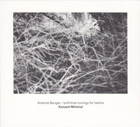 konzert minimal - antoine beuger - Tschirtner tunings for Twelve