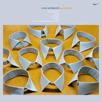 oren ambarchi - Quixotism