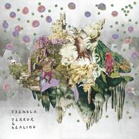 tsembla - Terror & Healing