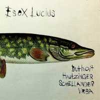 ESOX LUCIUS