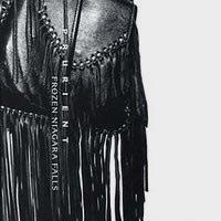 FROZEN NIAGARA FALLS (2CD)