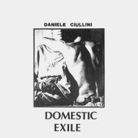 DOMESTIC EXILE : COLLECTED WORKS 82-86