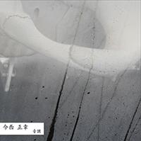 masayuki imanishi - Tone