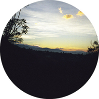OAXACA DAWN | BAMBOO