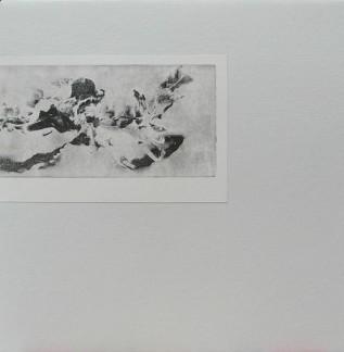 GRISAILLES (LP)