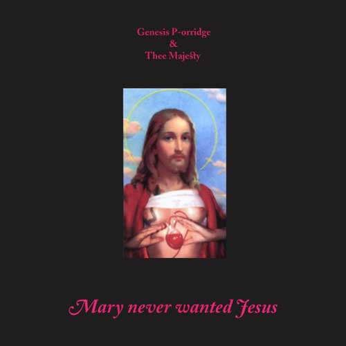 MARY NEVER WANTED JESUS
