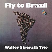 Fly To Brazil