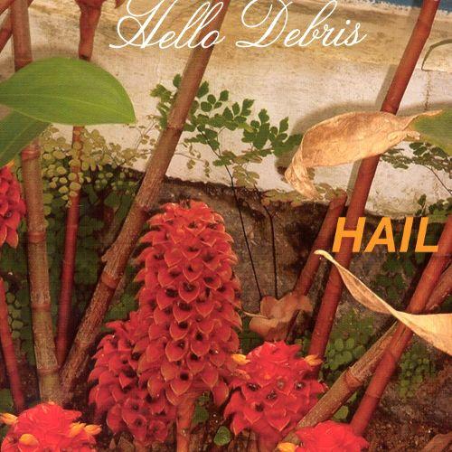 hail - Hello Debris