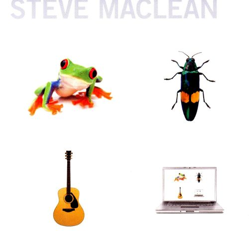steve maclean - Frog Bug Guitar Computer