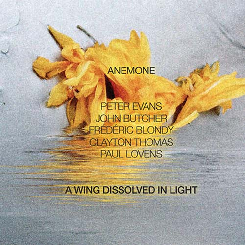 A WING DISSOLVED IN LIGHT