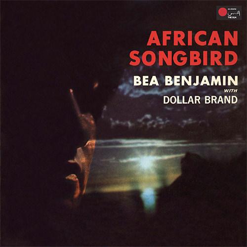 AFRICAN SONGBIRD