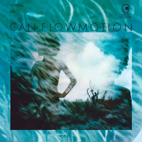FLOW MOTION (LP)