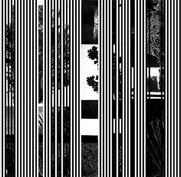 BASSLINES (2X7