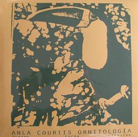 anla courtis - Ornitologia