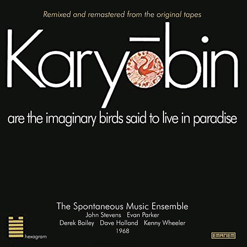 spontaneous music ensemble - Karyobin