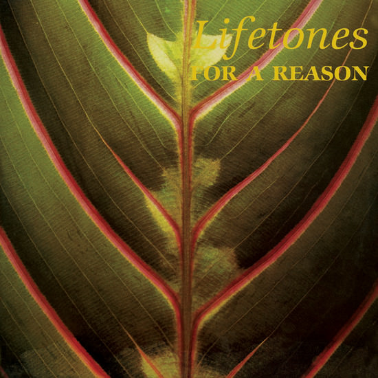 For A Reason (LP)