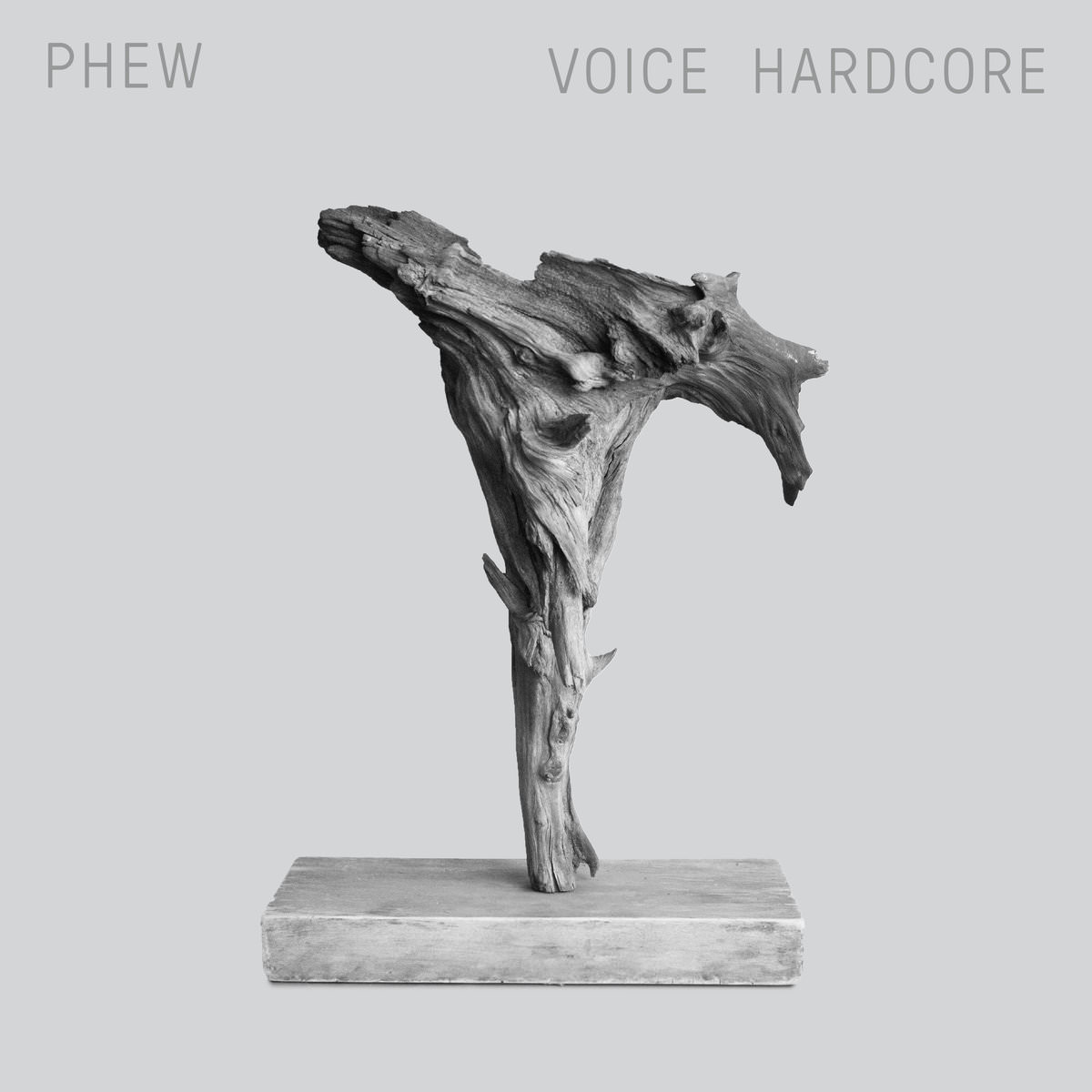 VOICE HARDCORE (LP)