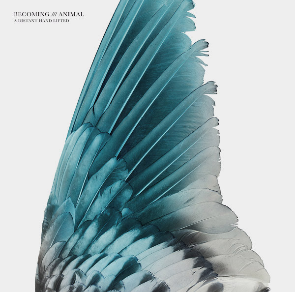 massimo pupillo - cindytalk - becoming animal - A Distant Hand Lifted (Lp)