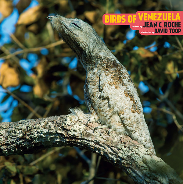 BIRDS OF VENEZUELA (LP)