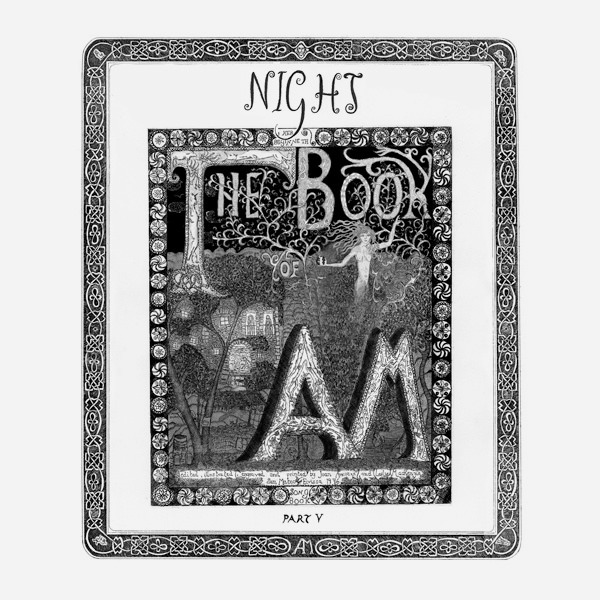 the book of am - Part V, Night (LP)
