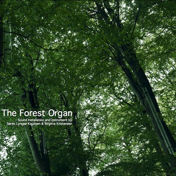 THE FOREST ORGAN (LP)