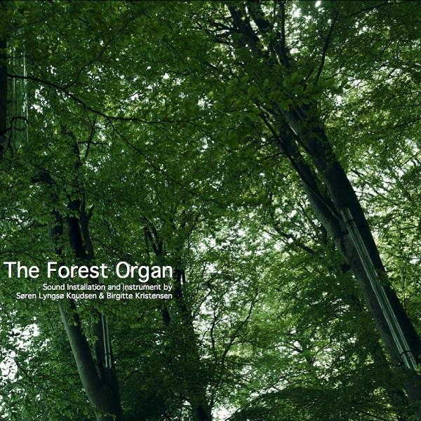 søren lyngsø knudsen - birgitte kristensen - The Forest Organ (Lp)