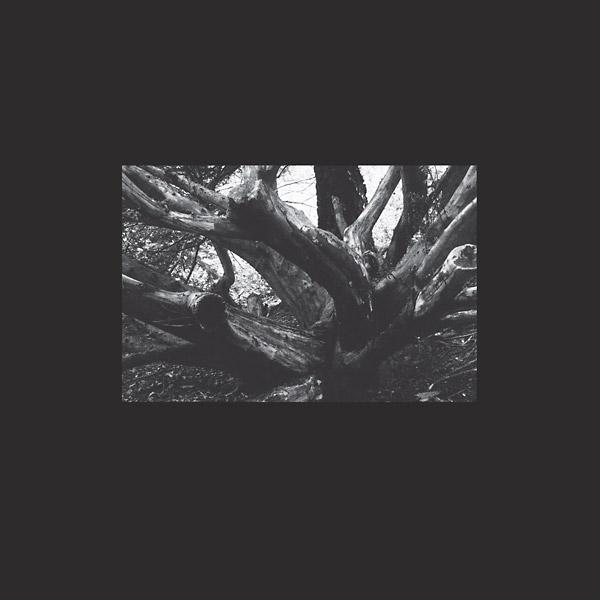 SEB-I YELDA (LP)