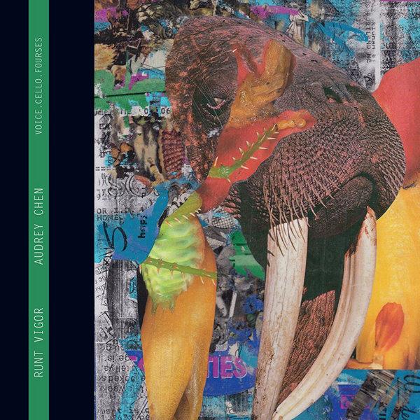 RUNT VIGOR (LP)