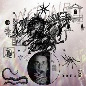 wet hair - Dream