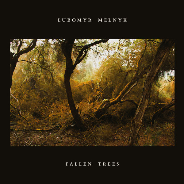 Fallen Trees (LP)