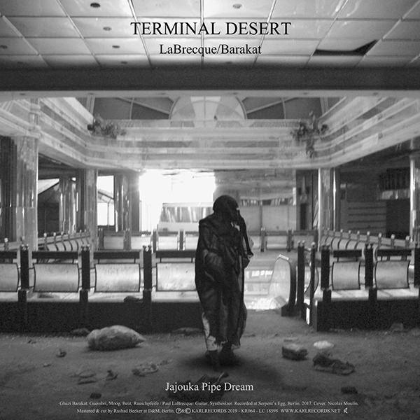 TERMINAL DESERT (LP)