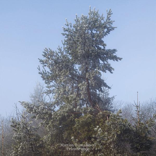 FRANVARANDE  (LP)