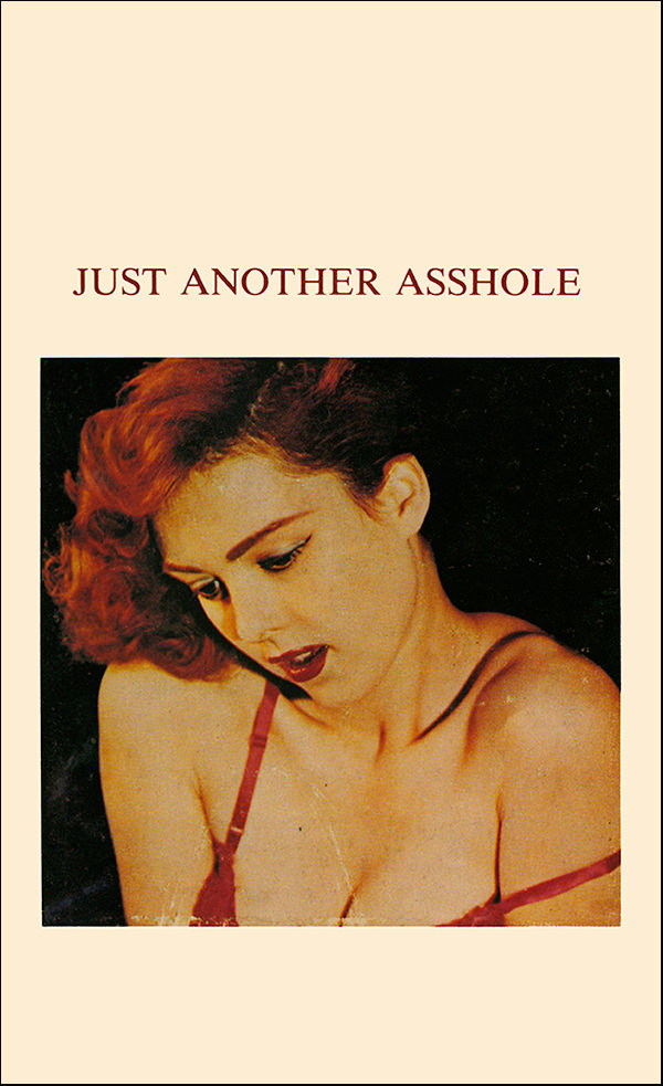 JUST ANOTHER ASSHOLE (BOOK)