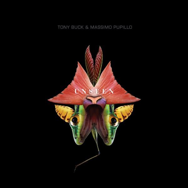 tony buck - massimo pupillo - Unseen (CD)