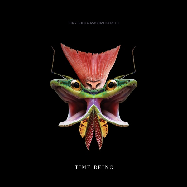 TIME BEING (LP)
