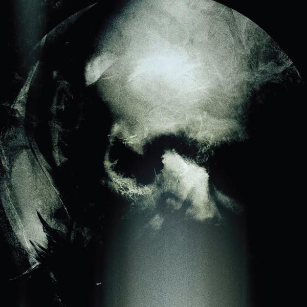 DEN FöRFöLJDES GRYNING (LP)