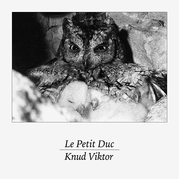 Le Petit Duc (7