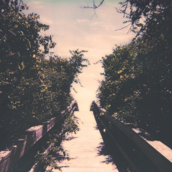 COQUINA DOSE (LP)