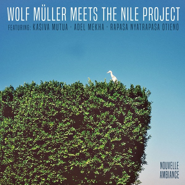 NOUVELLE AMBIANCE: WOLF MULLER MEETS THE NILE PROJECT