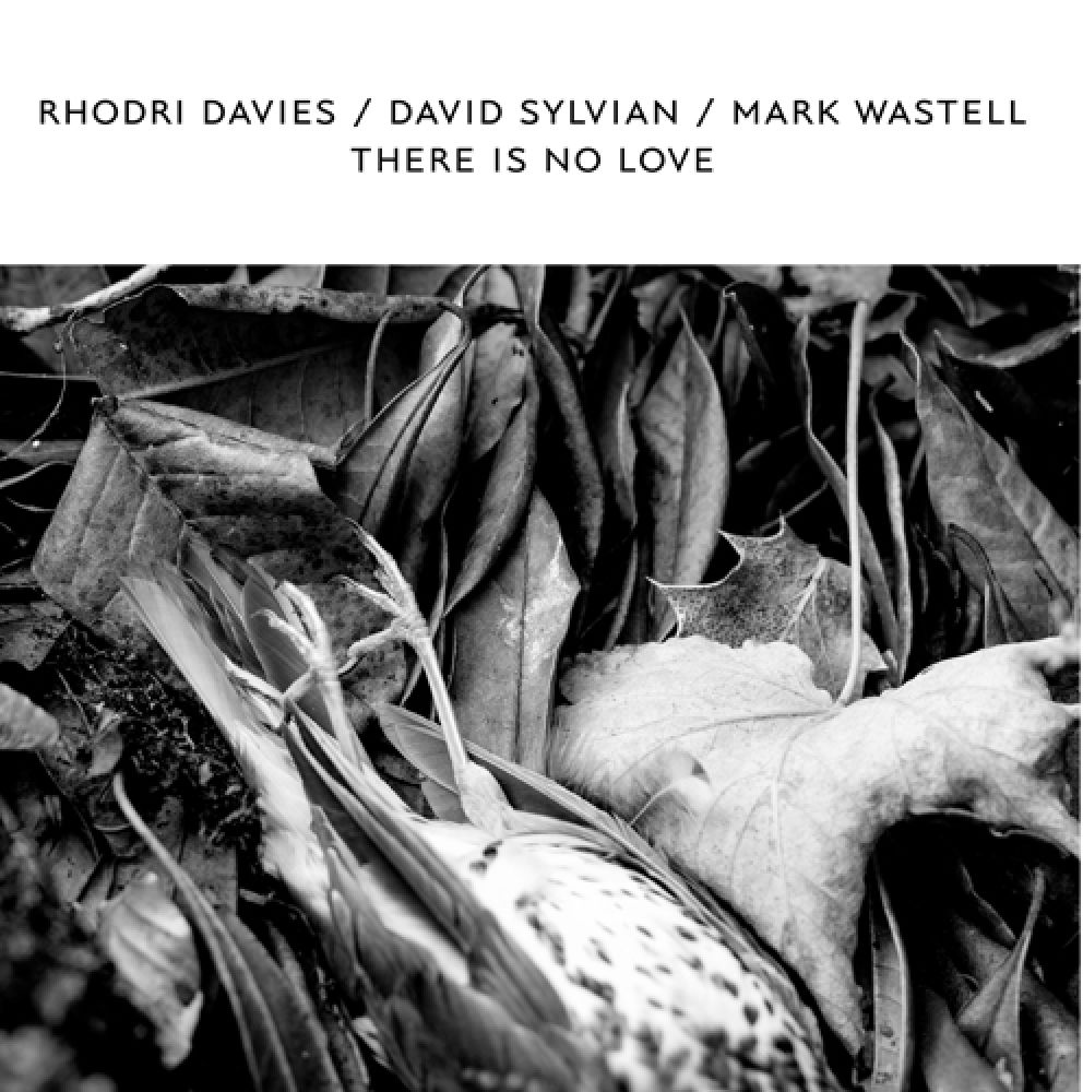 rhodri davies - mark wastell - david sylvian - There Is No Love (LP)