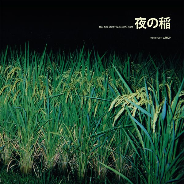 RICE FIELD SILENTLY RIPING IN THE NIGHT (LP)