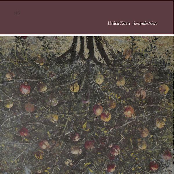 unicazürn - Sensudestricto (LP)